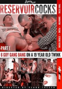 Reservoir Cocks Part 1 DVDR (NC)