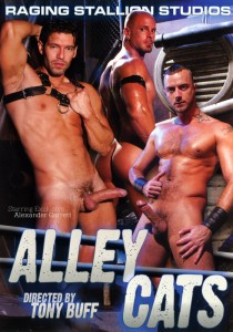 Alley Cats DVD (S)