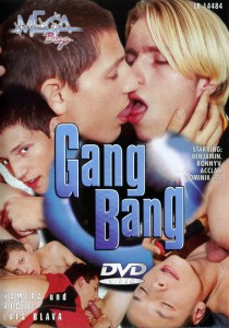 Gang Bang (Mega Boys) DVDR (NC)
