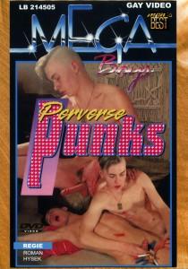 Perverse Punks + Fantasies DVDR (NC)