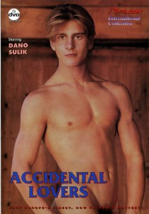 Accidental Lovers DVD (S)