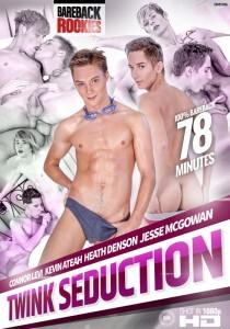 Twink Seduction DVD