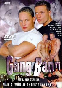 Gang Bang (Mans Best) DVDR