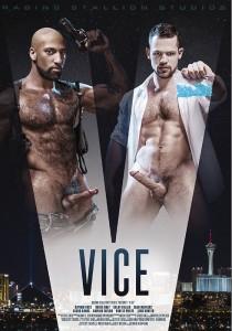 Vice DVD (S)