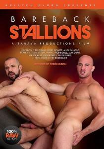 Bareback Stallions DVD (S)