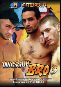 Wassup' Bro 3 DVD